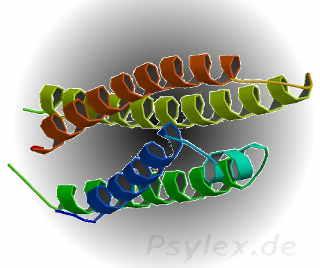 Apolipoprotein E