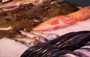 Vitamin D in Fisch