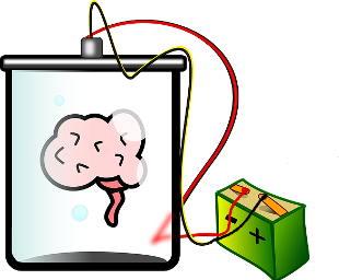 Elektrische Gehirnstimulation