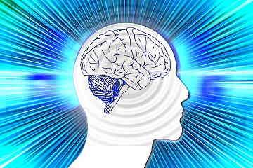 Gehirn Super-Ager
