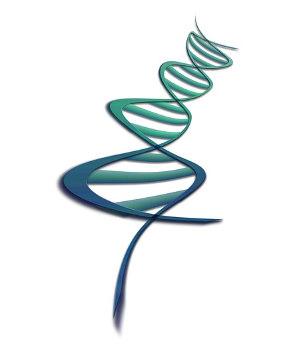 Beeinflussung durch Gene