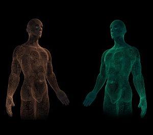 Körper - Geist