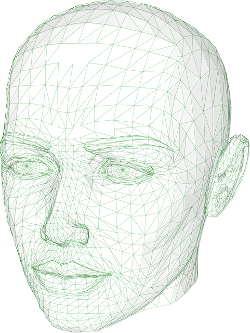 Virtueller Körpertausch