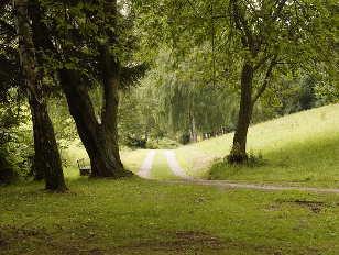 natur-weg