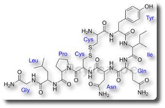 Chemische Strukturformel von Oxytocin