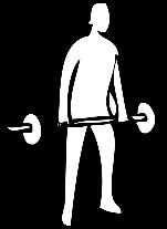 sport-gewichtheben