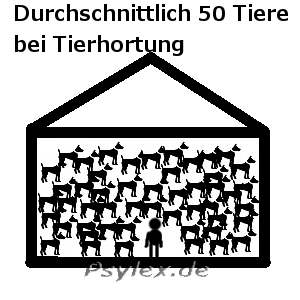 Tierhortung / Animal Hoarding