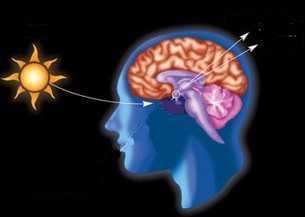 änderung im circadianen Rhythmus bei Depression